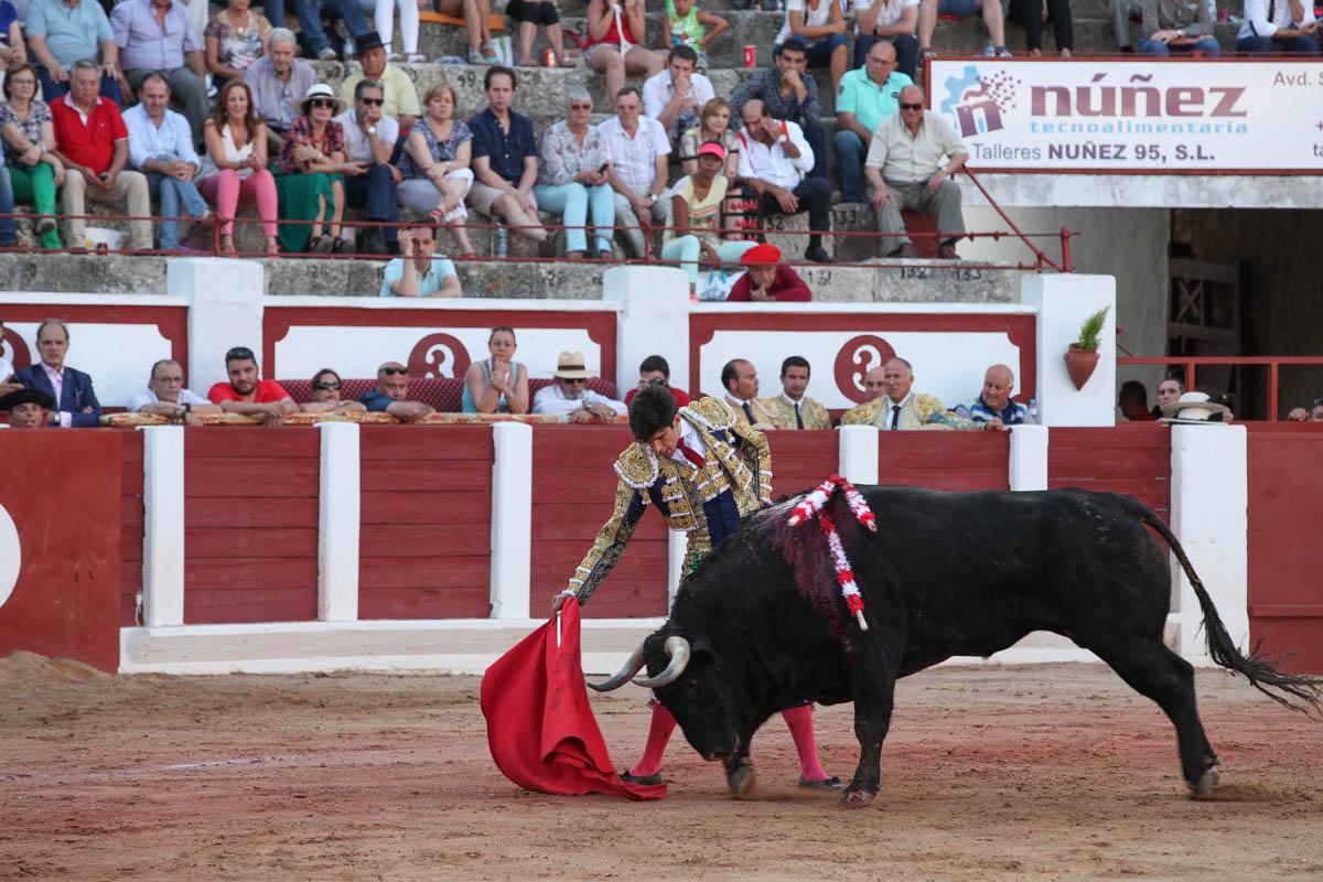 Procuro Nda Por Valladolid-665