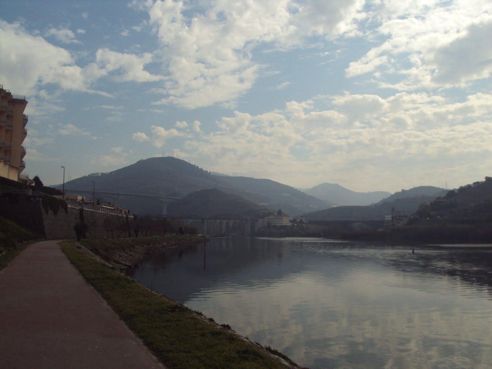 Se Procura Homem Em Do Douro Seville-3066