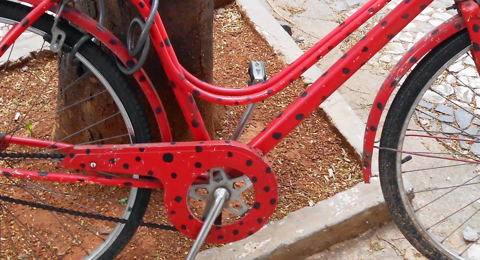 Uncio As S Bicicleta São Luís-6193