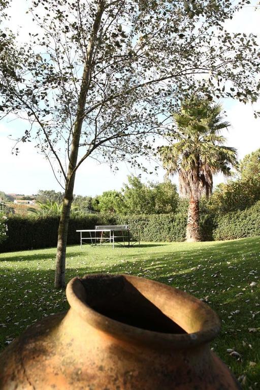 À Procura De Casal Les Caldas Da Rainha-4548