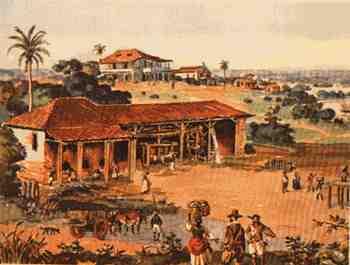 Mulheres Indígenas Da Procurando Paulo Afonso-3558