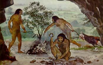 Mulheres Procurando Ibague Ecuador-5903