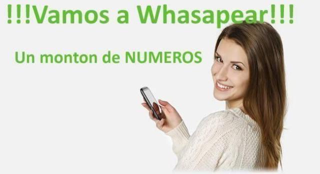 O Whatsapp De Mujeres Palma-5575