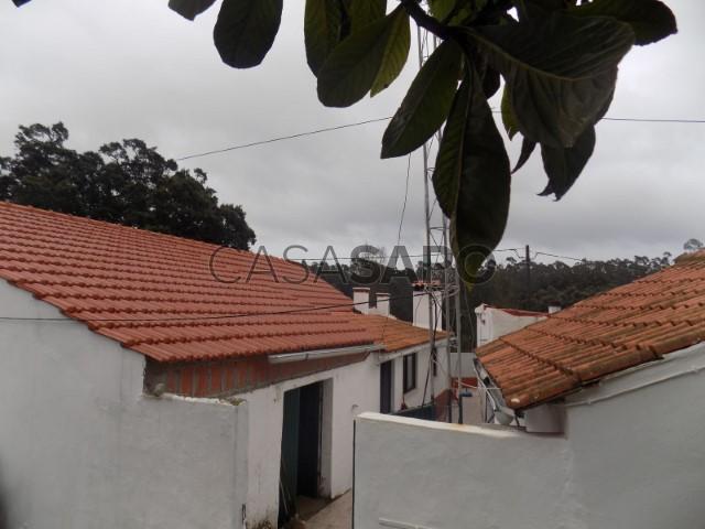 Os Anúncios Amador Rio Maior-5544