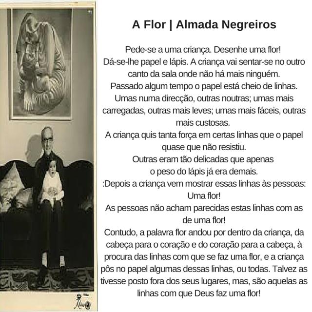 Procurando Frases Almada-4391