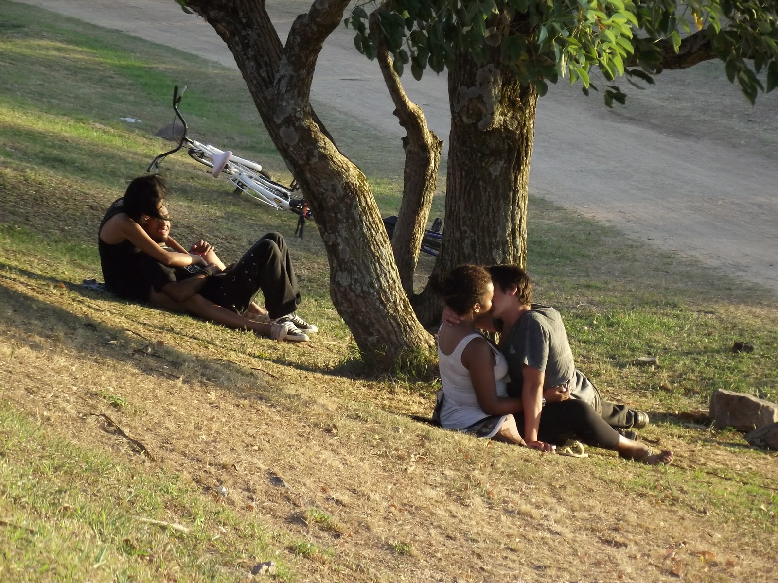 Procuro Casais Sw Em Martinique-3998
